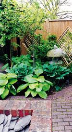 vrt-3.jpg