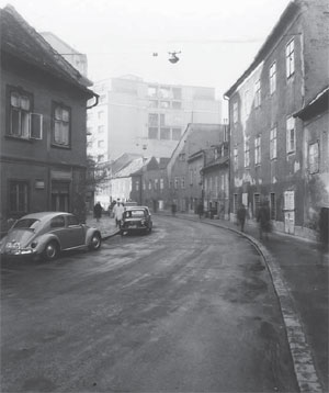 k46-bobovec-1-300